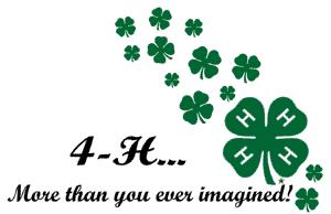 Image of ...4-H clover
